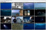 Superryba  Najszybszy morski drapie�nik / Superfish: Fastest Predator In The Sea (2011) PL.TVRip.XviD / Lektor PL