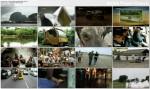 W 80 sposobów dooko³a ¶wiata / Around the World in 80 Ways (2011) PL.TVRip.XviD / Lektor PL